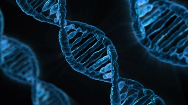 Will individuals or their employers own their genetic code